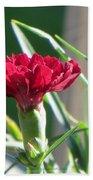 Carnation Named Hounsa Bath Towel