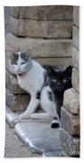 Cat Guardians Bath Towel