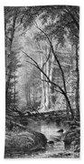 Catskill Brook, 1873 Hand Towel
