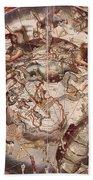 Cellariuss Constellations, 1660 Bath Towel