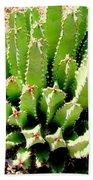 Cereus Peruvianis Cactus Bath Towel