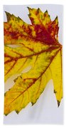 Changing Autumn Leaf In The Snow Bath Towel