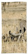 Cheetah Mother And Cubs Bath Towel