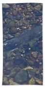 Chinook Salmon Bath Towel