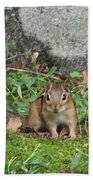 Chipmunk Bath Towel
