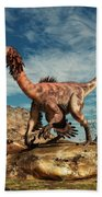 Citipati In The Desert Hand Towel