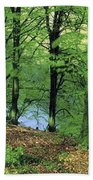 Co Kerry, Standing Stone On Clogher Bath Towel