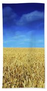 Co Louth,irelandwheat Field Bath Towel
