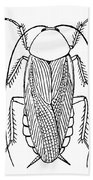 Cockroach Bath Towel