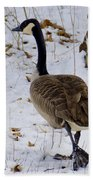 Cold Footed Goose On The Loose Bath Towel