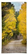 Colorado Rocky Mountain Aspen Road Portrait  Bath Towel