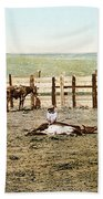 Colorado: Roping A Steer Bath Towel