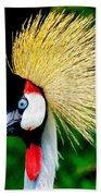 Colorful Bird Bath Towel