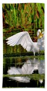 Colorful Morning At The Wetlands Hand Towel