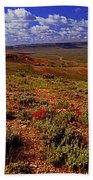 Colorful Valley From Fossil Lake Trailsil Bu Bath Towel