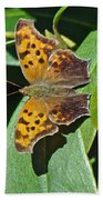 Comma Anglewing Butterfly - Polygonia C-album Bath Towel