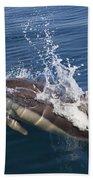 Common Dolphin Delphinus Delphis Bath Towel