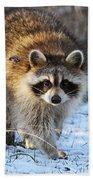 Common Raccoon Bath Towel
