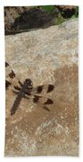 Common Whitetail Dragonfly Bath Towel