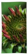 Coneflower Close-up Bath Towel