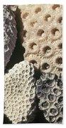 Coral Cobbles On Beach Of Bonaire Bath Towel