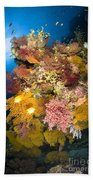 Coral Reef Seascape, Australia Bath Towel