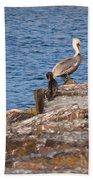 Cormorants And Pelican Bath Towel