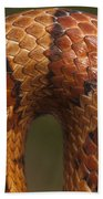 Cornsnake Elaphe Guttata Scale Pattern Bath Towel