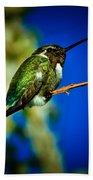 Costa's Hummingbird Bath Towel