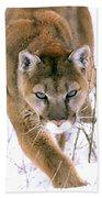 Cougar Stalks Through Snow Bath Towel