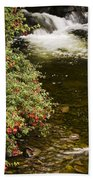 County Kerry, Ireland Fuchsia Bush Bath Towel