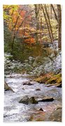 Courthouse River In The Fall Bath Towel