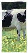 Cow In Pasture Bath Towel