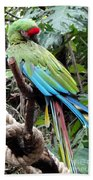 Coy Parrot Bath Towel