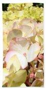 Cream Pink Hydrangea Flowers Art Prints Floral Bath Towel