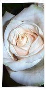 Creamy Rose Bath Towel