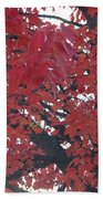 Crimson Leaves Bath Towel