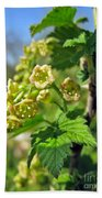 Currant In Bloom Hand Towel