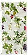 Currants And Berries Bath Towel