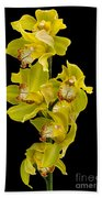 Cymbidium - Boat Orchid Bath Towel