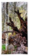 Cypress Roots Bath Towel