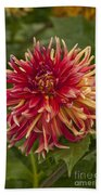 Dahlia In Its Prime Bath Towel