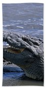 Danger On The Mara River Bath Towel