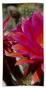 Dark Pink Cactus Flowers Bath Towel