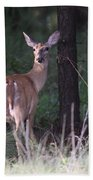 Deer - Doe - Nearing The Edge Bath Towel
