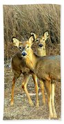 Deer Duo Bath Towel