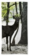 Deer In The Woods Bath Towel