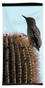 Desert Bird Atop Saguaro Bath Towel