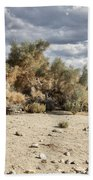Desert Cloud Palm Springs Bath Towel
