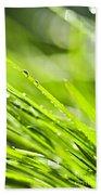 Dewy Green Grass  Bath Towel
